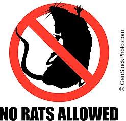 nie, szczury, dozwolony
