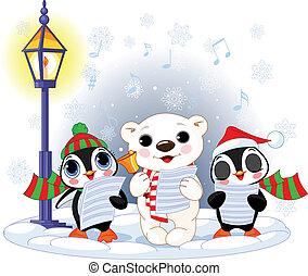 niedźwiedź, polarny, boże narodzenie, %u2013, kolędnicy