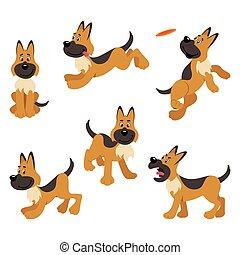 niemiecki pastuch, pozy, szczeniak, pies