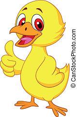 niemowlę, sprytny, kurczak, kciuk do góry