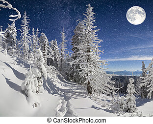 noc, góra, zima krajobraz, las, piękny