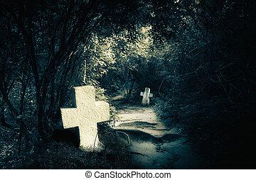 noc, tajemniczy, opuszczony, las, groby, ciemny