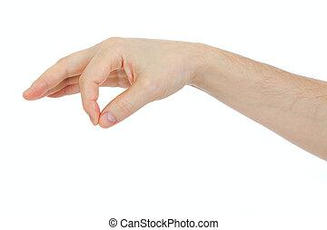 obiekt, jakiś, odizolowany, ręka, rzecz, dzierżawa, biały samczyk