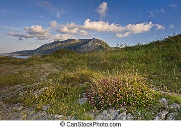 odludny, góra