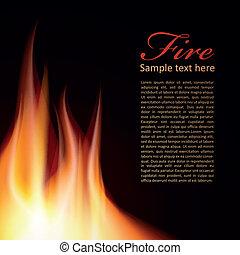 ogień, tekst, projektować, tło