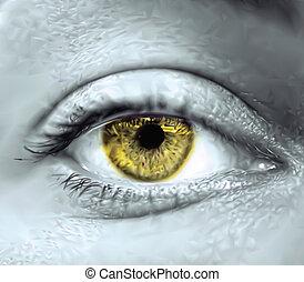 oko, wektor, macro., żółty, samica