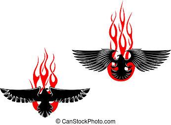 orły, plemienny, czarnoskóry, płomienie