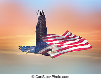 orzeł, północ, podwójny, łysy, skutek, amerykanka, flag., ekspozycja