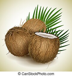 orzech kokosowy