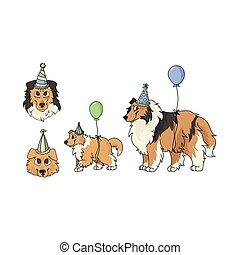 owczarek szkocki, sheepdog, partia, wektor, ilustracja, sprytny, fluffy., psiarnia, szczeniak, odizolowany, mascot., clipart., psi, pies, lovers., celebrowanie, purebred, szorstki, rysunek, komplet, krajowy, genealogia