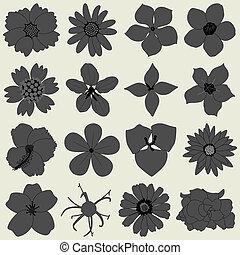 płatek, flora, kwiat, ikona