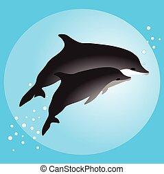 pływacki, para, delfiny, ocean