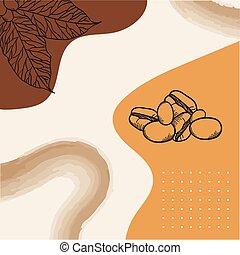 papier, projektować, liście, afisz, fasola, wektor, kawa
