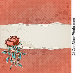 papier, róża, porwany, tło