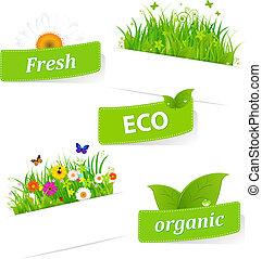 papier, trawa, lepki, zielony, kwiat
