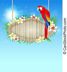 papuga, tło, czerwony