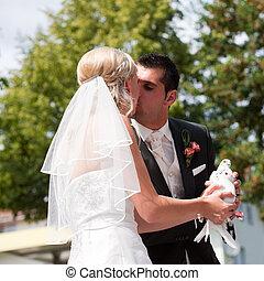 para, ręka, gołębica, ślub