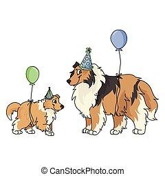 partia, mascot., krajowy, genealogia, ilustracja, odizolowany, szczeniak, wektor, purebred, sprytny, celebrowanie, szorstki, psiarnia, fluffy., lovers., psi, pies collie, rysunek, sheepdog, kapelusz, clipart.