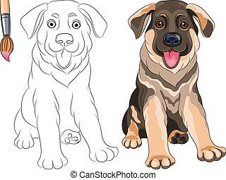 pasterz, kolorowanie, niemiec, pies, wektor, uśmiechanie się, szczeniak, książka