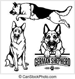 pasterz, komplet, niemiec, -, pies, ilustracja, odizolowany, wektor, tło, biały