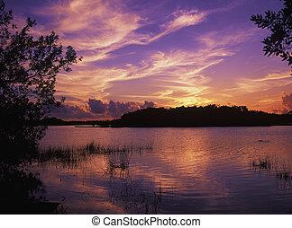 paurodus, zachód słońca, staw