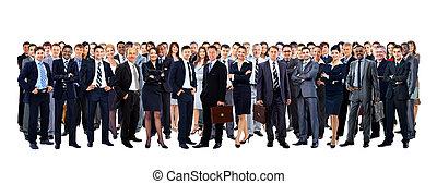 pełny, grupa, ludzie, odizolowany, wielki, długość, biały