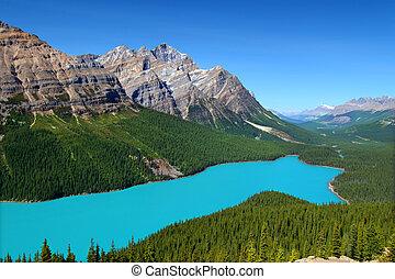 peyto, kanada, jezioro