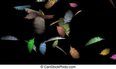 pióro, kolor, ruchomy
