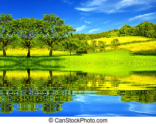 piękny, środowisko, zielony