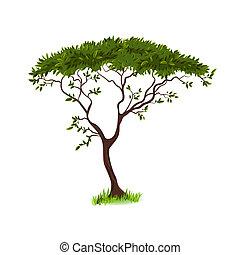 piękny, drzewo, projektować, twój