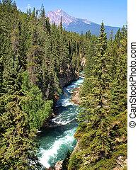 piękny, góry, skalisty, narodowy park, jaspis, alberta, kanada, krajobraz