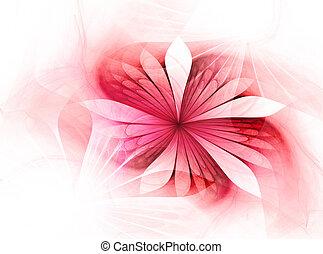 piękny, kwiat, fractal, artystyczny