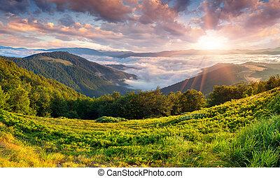 piękny, lato, góry., krajobraz, wschód słońca