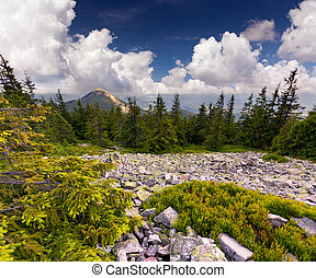 piękny, lato, skalisty, krajobraz, góry