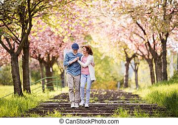 piękny, miłość, wiosna, para zewnątrz, senior, nature.