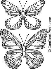 piękny, motyle, wektor