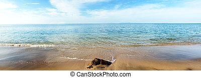 piękny, motyw morski, dzień, lustrzany