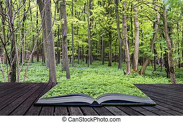 piękny, pojęcie, wiosna, urządzenia wzywające do telefonu, twórczy, wzrost, zielony las, wibrujący, książka, krajobraz