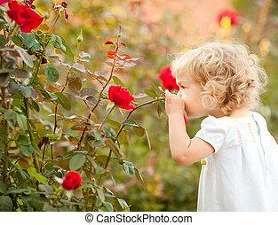 piękny, róża, dziecko, pachnący