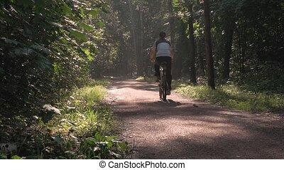 piękny, rower, atleta, park., przez, słońce, jeżdżenie, samiec