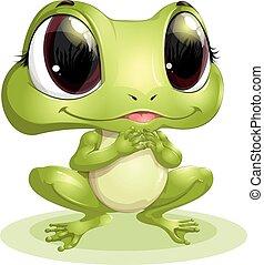 piękny, wielkie wejrzenie, żaba