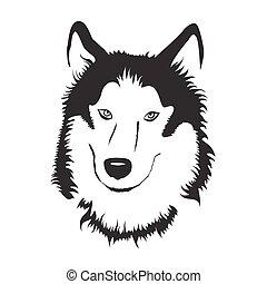 pień, wektor, husky., illustration., syberyjski