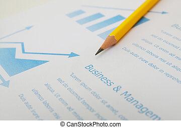 pieniężny planistyczny, paperwork, wykres, informuje