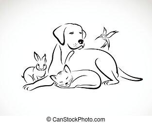 pies, grupa, pieszczochy, kot, -, ptak, odizolowany, wektor, tło, biały królik