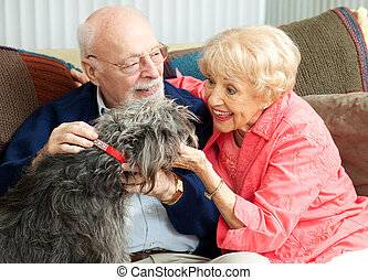 pies, ich, dom, seniorzy