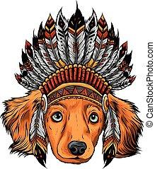 pies, ilustracja, indianin, tradycyjny, kapelusz, głowa, wektor