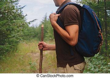 piesza pałka, drewniany, wycieczkowicz, las, człowiek