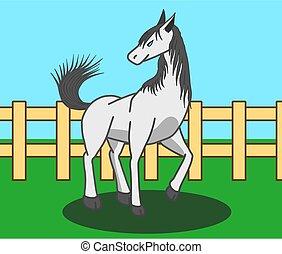 pieszy, biały, field., koń, samica