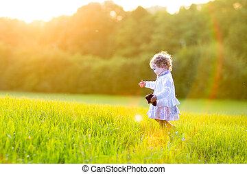 pieszy, jesień, pole, zachód słońca, dziewczyna niemowlęcia, godny podziwu