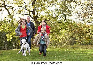 pieszy, rodzina, park, młody, pies, przez, outdoors